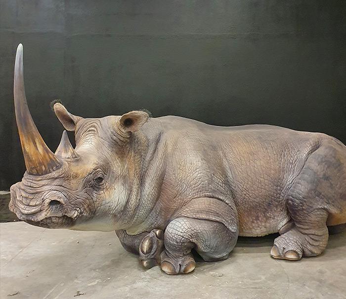 Rinoceronte fresato